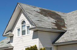 San Francisco, Bay Area, roofing company