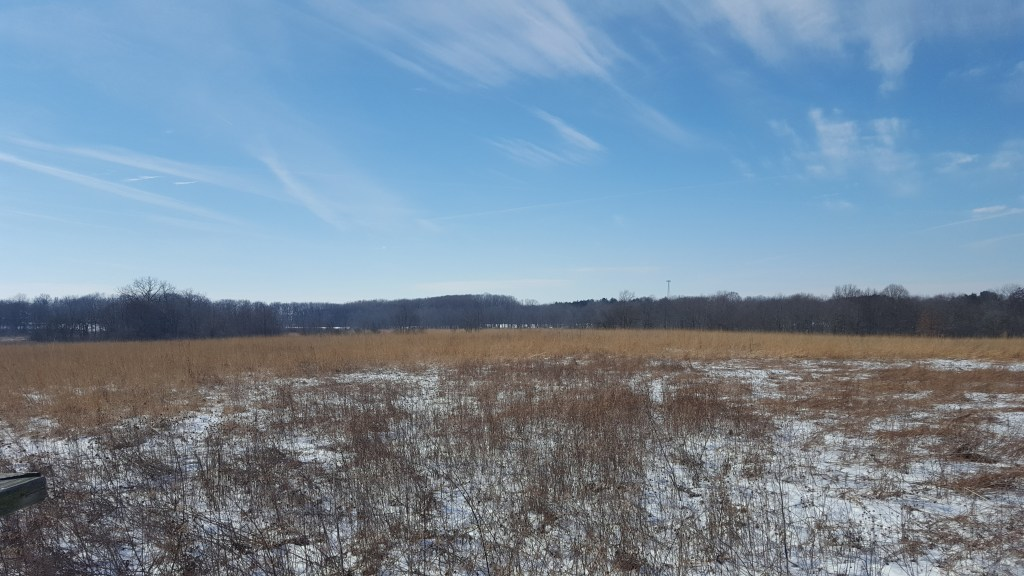 a prairie lightly dashed with snow