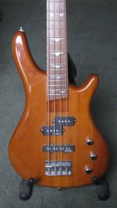 Vanessa's bass