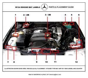 124 Series Decals  Stickers  Labels Restoration Guide  Page 4  MercedesBenz Forum