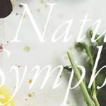 Nature Symphony - Nghệ Thuật Từ Thiên Nhiên