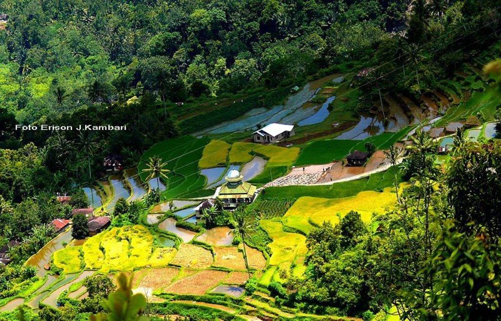 Pulau Harapan Itu Akan Diwujudkan Oleh UMKM Desa – Berdesa