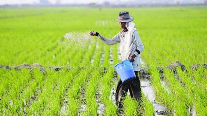 Usaha Meningkatkan Hasil Pertanian Berdesa