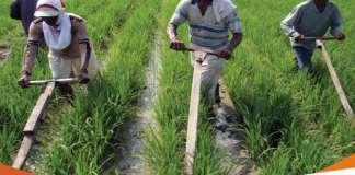 Pengaruh Potensi Pada Klasifikasi Desa Berdasarkan Mata Pencaharian