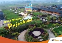 Desa Indonesia Yang Terkenal di Tingkat Internasional