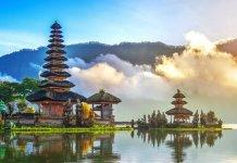 Jenis Peluang Usaha di Bali