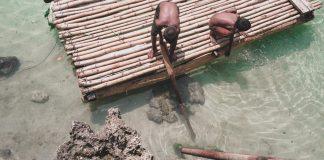 Pembangunan Desa