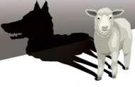 В ЮАР овца родила что-то очень похожее на человека