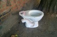 Депутаты против туалетов: в Бердичеве снесут один из «оазисов облегчения»