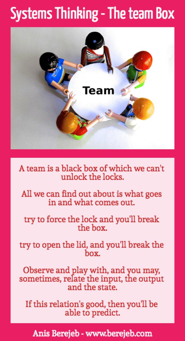 systemsthinkingTeamBox