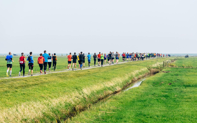 Berenlopers in de polder tijdens de hele marathon van de Berenloop 2018.