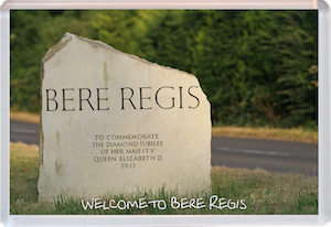 Bere Regis Locality Study