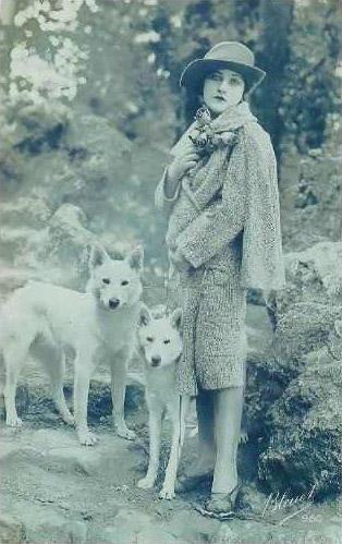 Ann Tracy et ses bergers allemands blancs