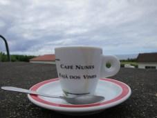 Kaffee der in der Faja Vimes wächst