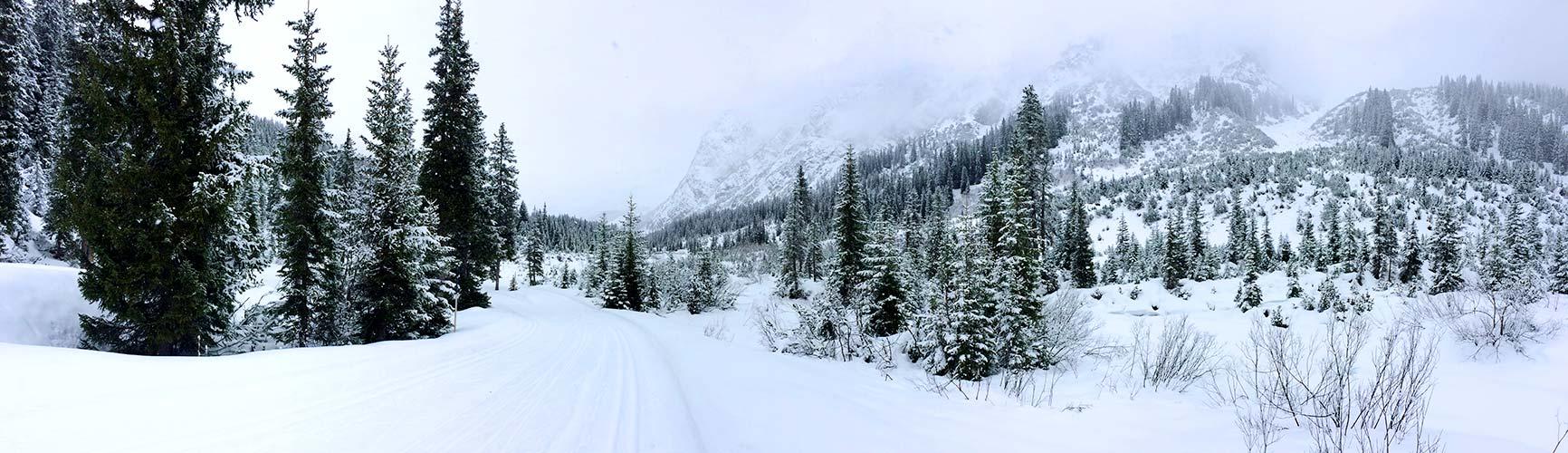 Alternativen zum Schifahren | Langlaufen | Bergland Appartements in Lech am Arlberg | Skiurlaub auf 1600m | Zahlreiche Kilometer Langlauf-Loipen