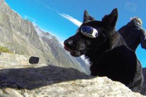 Wandern mit Hund Seminar Ravensburger Hütte Spuller See
