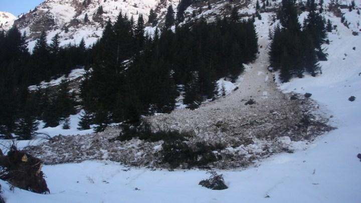 Wetterspitze (2709 m)
