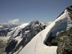 Gipfelgrat Zebrù