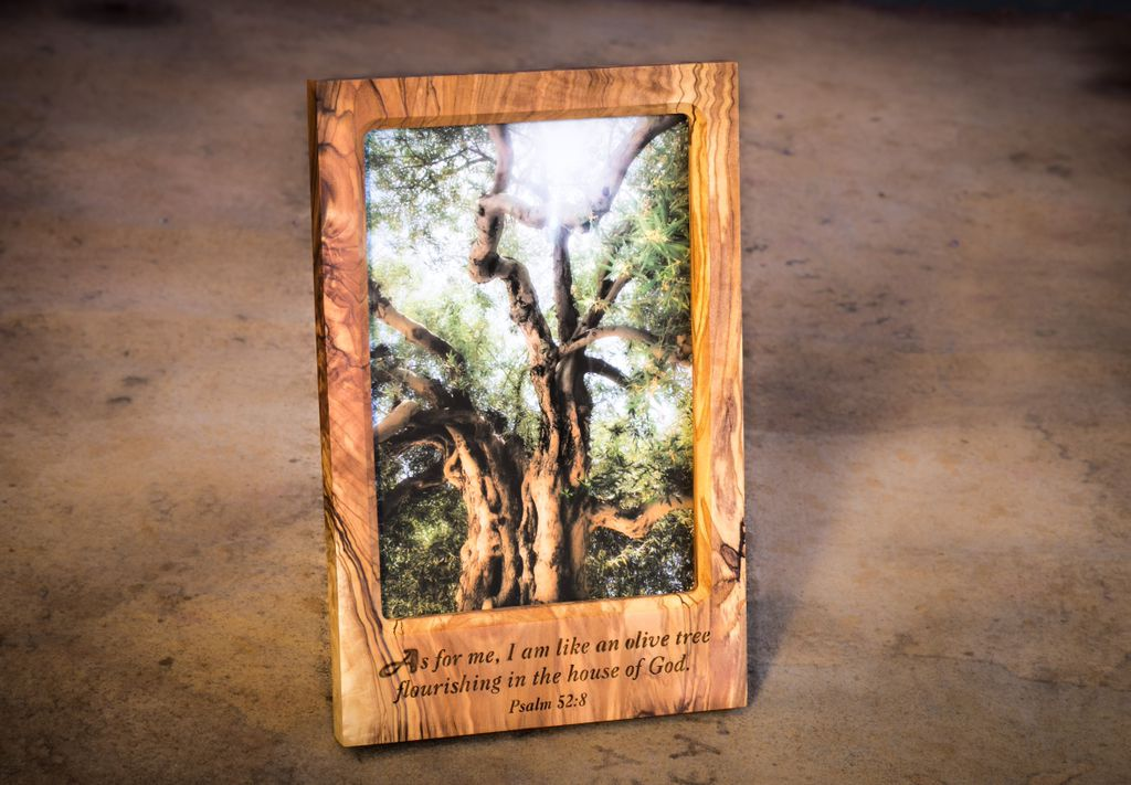 Olive Tree Picture In Engraved Olive Wood Frame Berg