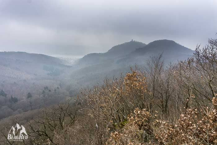 Wanderung Siebengebirge Großer Ölberg Drachenfels
