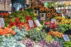 Columbia Road Flower Market 10