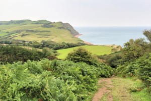 Jurassic Coast - Western view of coast from the climb to Golden Cap