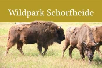 Bild-Wildpark-Schorfheide-2
