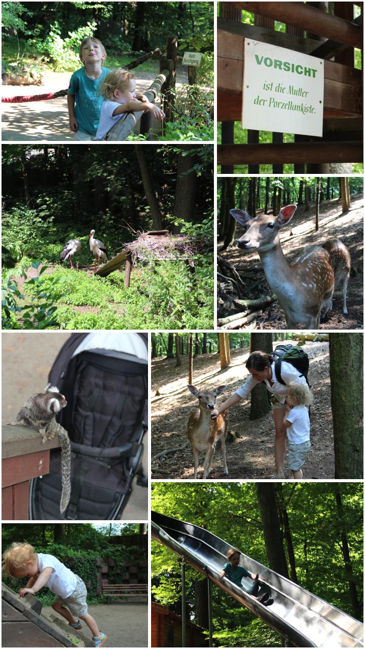 Impressionen aus dem Zoo Eberswalde