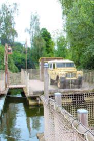 Hier werden Krokodile verladen