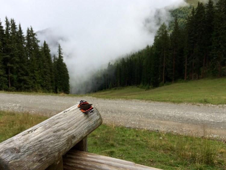 Tirol barrierefrei: Trotz kühler Temperaturen im Sommer war ich vom Kaunertal begeistert. www.berlinfreckles.de