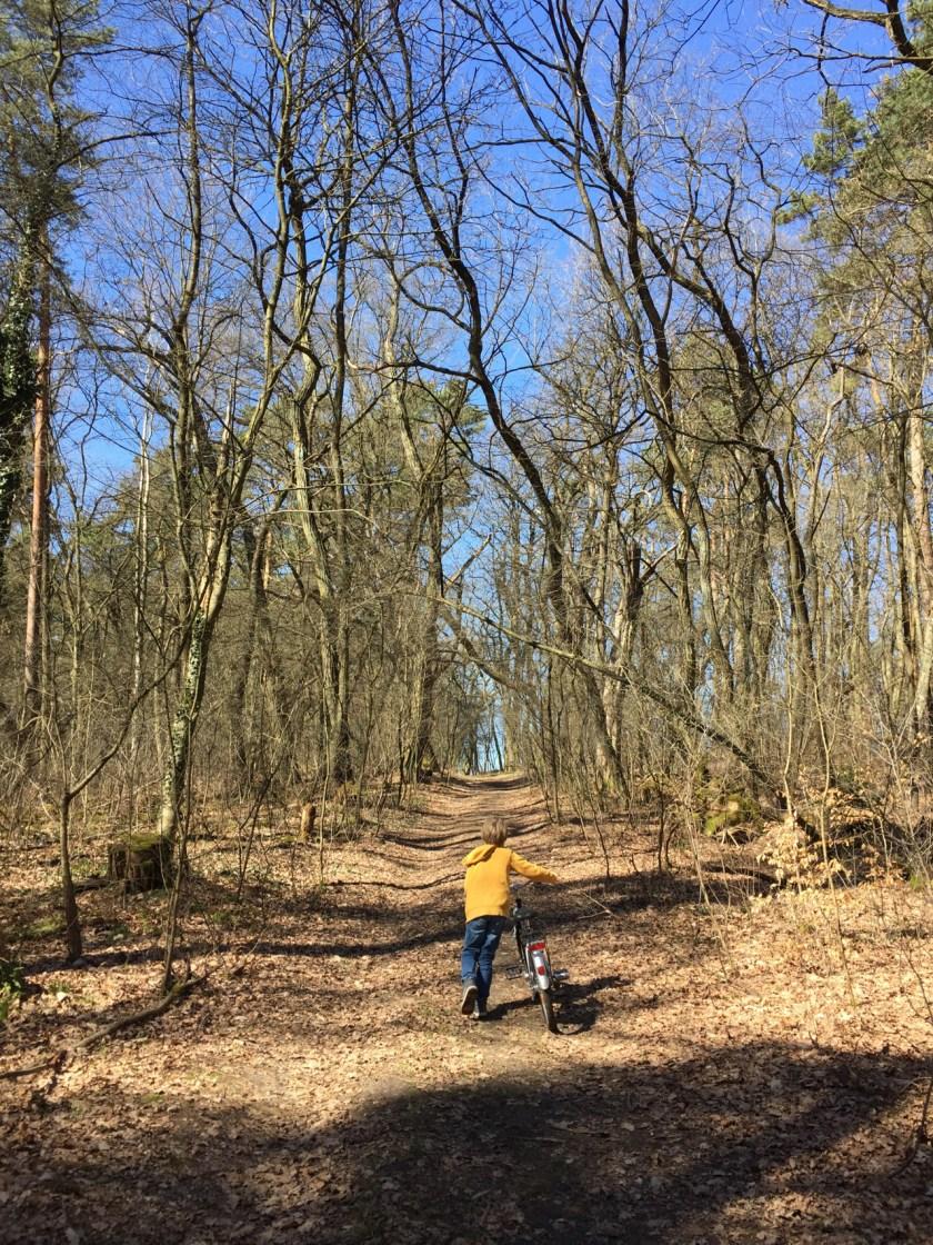 Brandenburg ist nicht nur flach. Das merken alle, die mit dem Rad kreuz und quer durch den Wald fahren.
