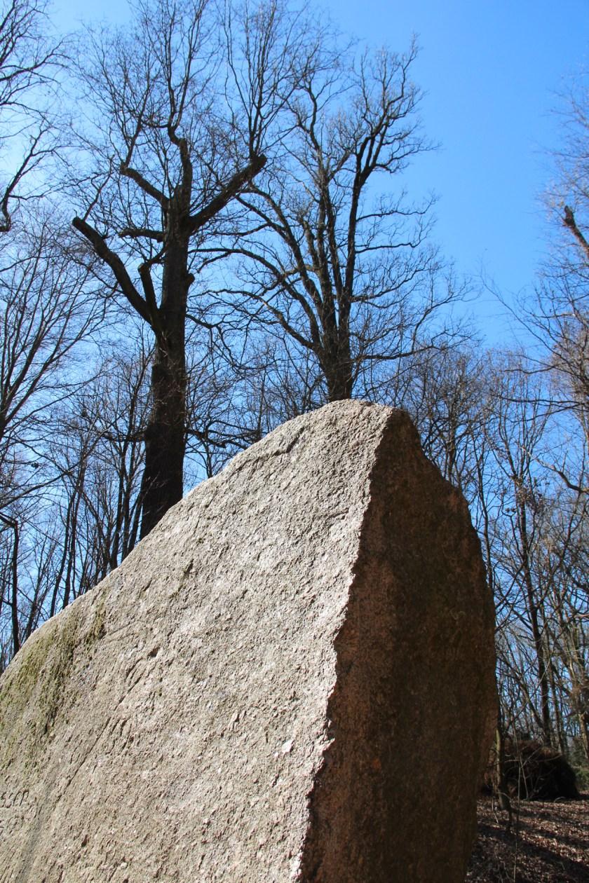 Einer der beiden Markgrafensteine. Die größten Findlinge in Brandenburg.