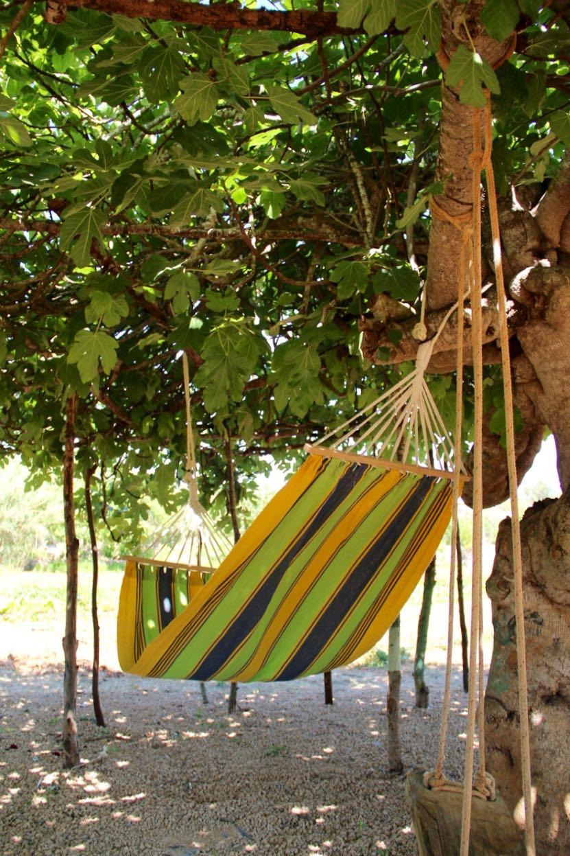 Ibiza: Die Finca Ecologica Can Muson bei Santa Eulalia. Bauernhof einmal anders.