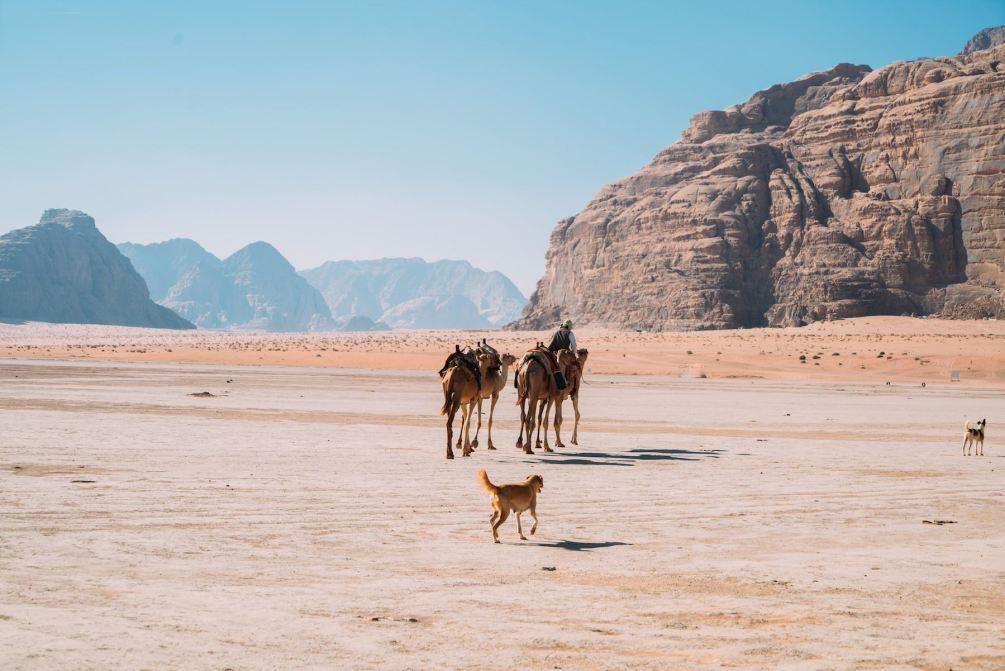 Kamelritt, Wadi Rum, Wüste in Jordanien. Jordanien mit Kindern: Tipps und Reiseinspirationen findest du auf www.berlinfreckles.de