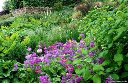 Üppige Hangbepflanzung im Central Stream Garden