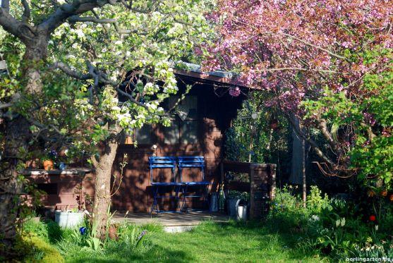 Baumblüte über der Hütte