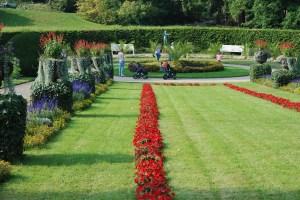 Botanischer Garten, Rabatte