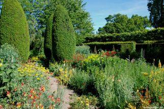 Der Bauerngarten im Juni
