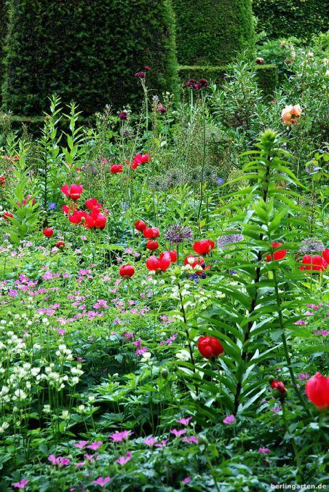 Der Paeony Garden