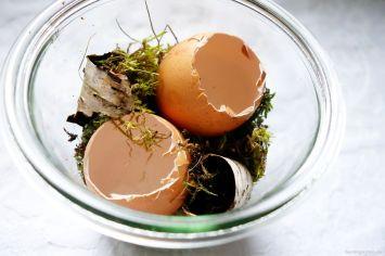 Eierschalen als Vasen