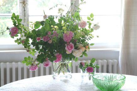 Ein Rosenbeet in der Vase