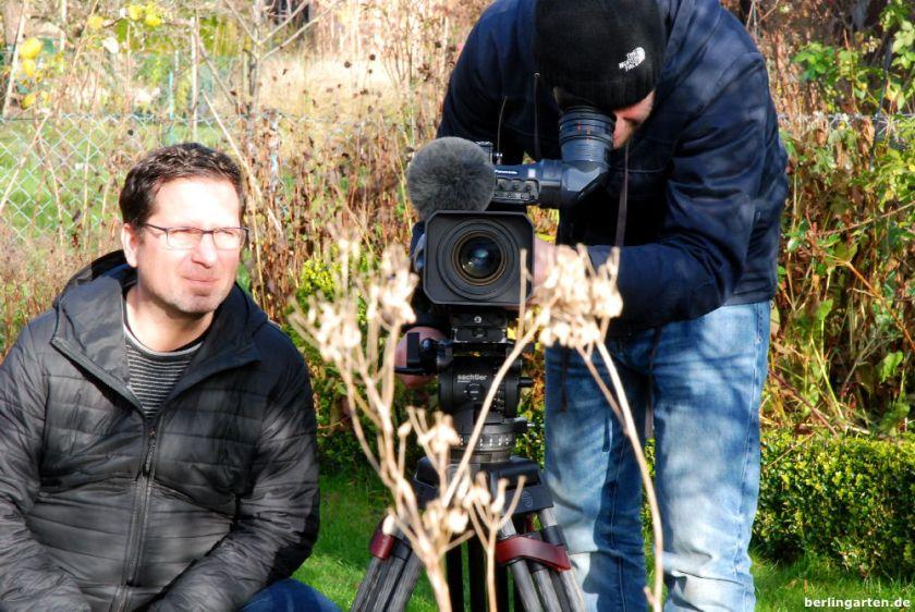 Filmobjekt Gräser