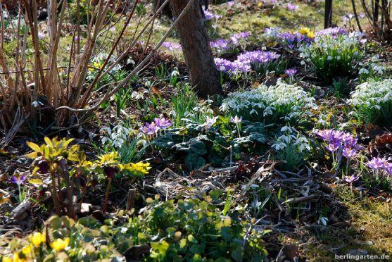 Frühlingsszene