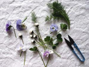 Hornveilchen, Gänseblümchen, Klee: was der Garten schon hergibt