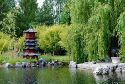 Dafür waren die ursprünglichn Gärten der Welt berühmt: die asiatischen Gärten