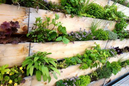 Idee für Balkon oder Terrasse: vertikales Gärtnern mit Kräutern
