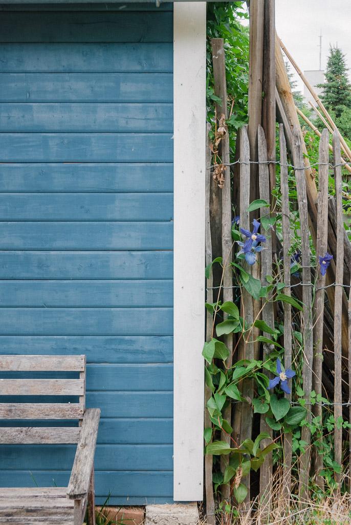 Hübsch: blaues Gartenhaus mit Clematis