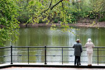 Kleiner Teich im Lilienthalpark