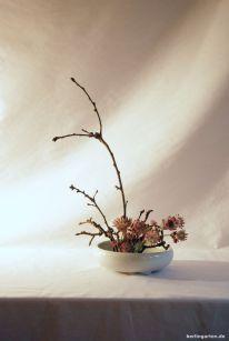Mein Ikebana mit Sterndolde