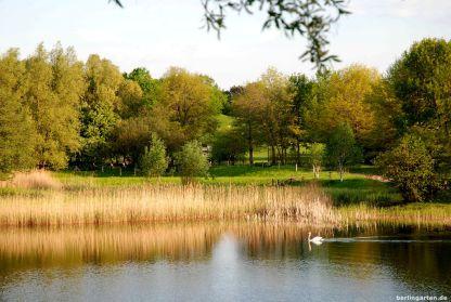 Abends besonders malerisch: Naturlandschaft im Britzer Garten